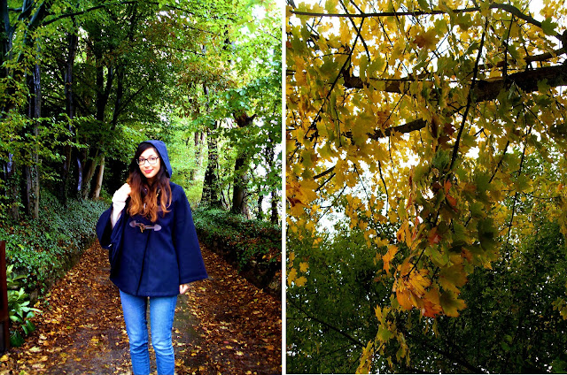 #sky #rain #nature #landscape #autumn #fall foglie, leaves, october, ottobre, george eliot, autunno, ragazza, girl, cape, vestito, cappa, zara, wedges, zeppe, love, ragazzo, boy, boy and girl, romantic, cute, pioggia, bruxelles, belgio, belgique