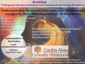 WORKSHOP COM CACILDA ALVES