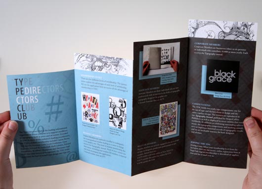 Typographic Brochure Design