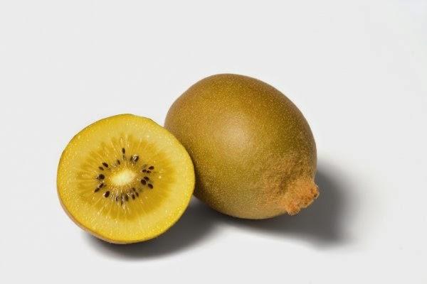 Buah kiwi merupakan salah satu buah yang sangat direkomendasikan untuk dikonsumsi demi me Kandungan dan Manfaat Buah Kiwi Bagi Kesehatan