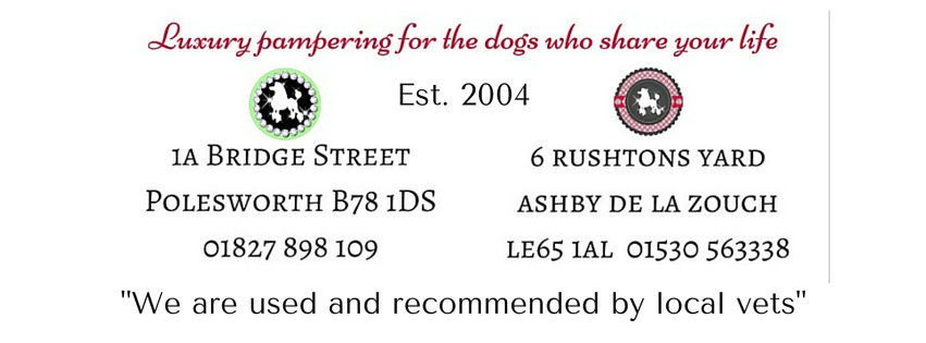Dog Grooming Salons in Polesworth and Ashby de la Zouch