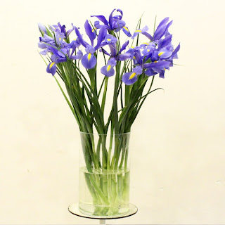 jarron de flores de iris