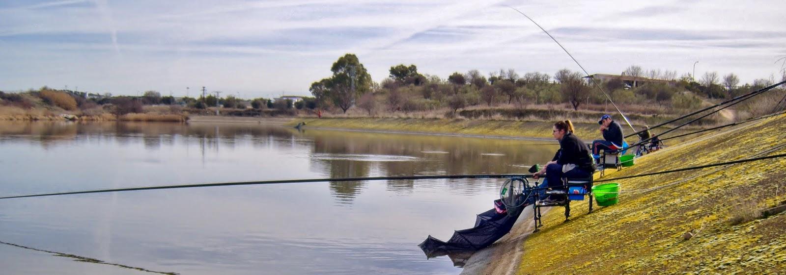 http://albun-de-fotos.blogspot.com.es/2014_02_09_archive.html