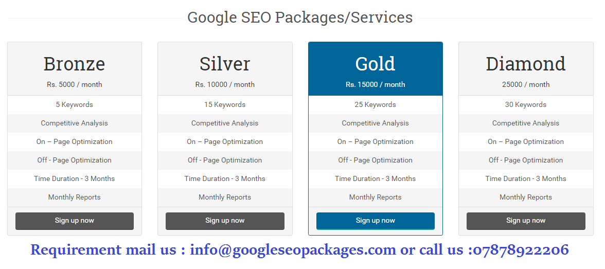 seo package prices india