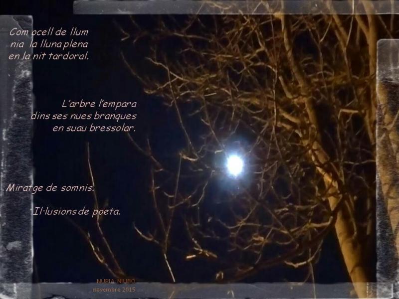 Captura del vídeo 'Nocturn a la Mitjana' de Jaume Climent