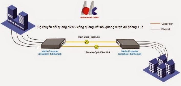 kết nối mang cáp quang, dự phòng đường quang 1+1