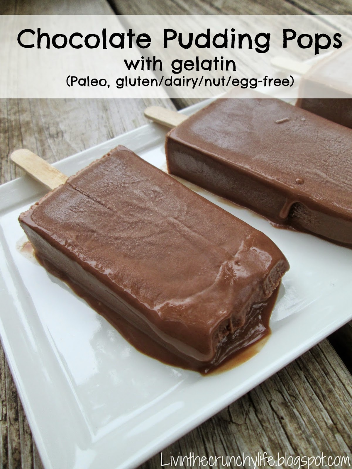Paleo Pudding Pops: Chocolate or Banana (Paleo, Gluten/Dairy/Egg-Free)