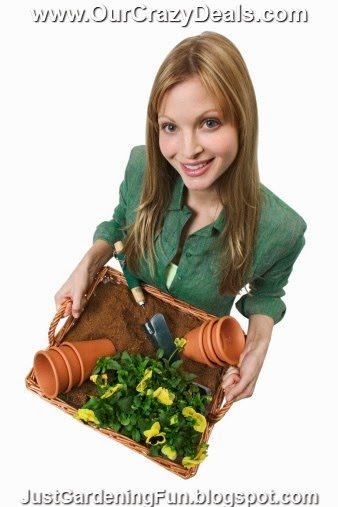 Portrait Picture Woman Holding Plant and Potting Basket