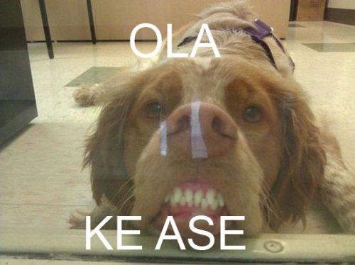 Significado de Ola Ke Ase + Imágenes
