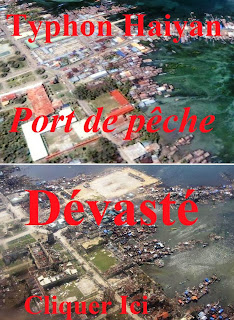 http://aquaculture-aquablog.blogspot.fr/2013/11/philippines-cyclone-haiyan-peche-typhon.html