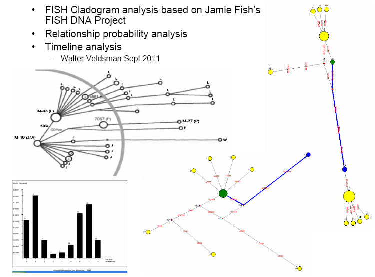 Windsor fish family history 1700 2018 england cladogram dna the analysis also shows a distant relationship between the nc fish the bowden fish ccuart Choice Image