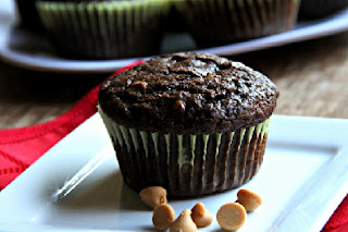 chocolate peanut butter muffins with peanut butter chips on a white plate