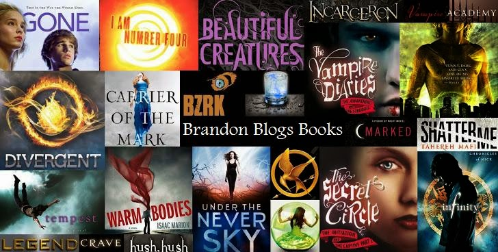 Brandon Blogs Books