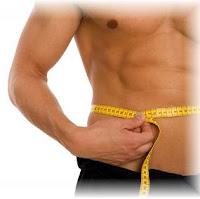 fit body men's