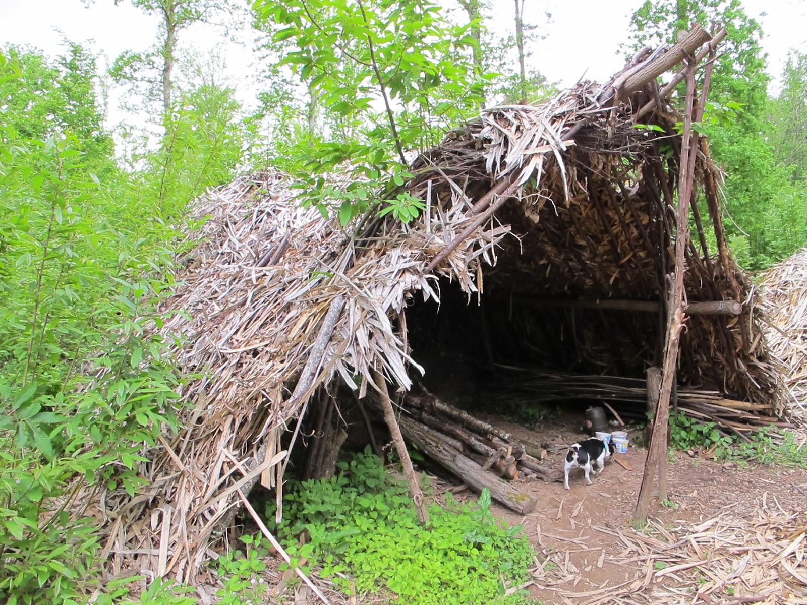 comment fabriquer une cabane avec des branches. Black Bedroom Furniture Sets. Home Design Ideas