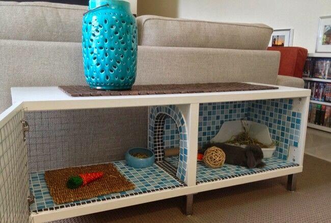 Rabbit nation indoor rabbit cage ideas for Design indoor rabbit cages