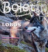 O LOBO COME BOLETUS