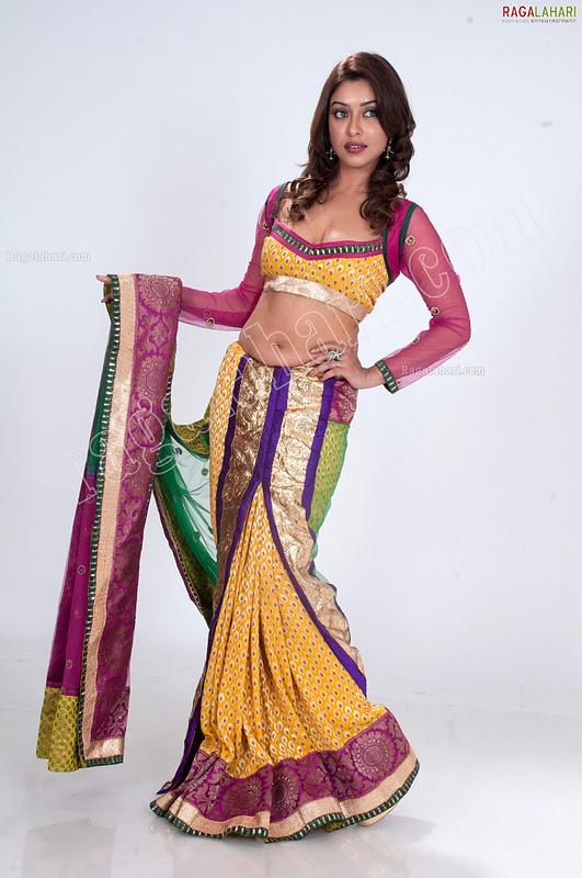 Payal ghosh in saree