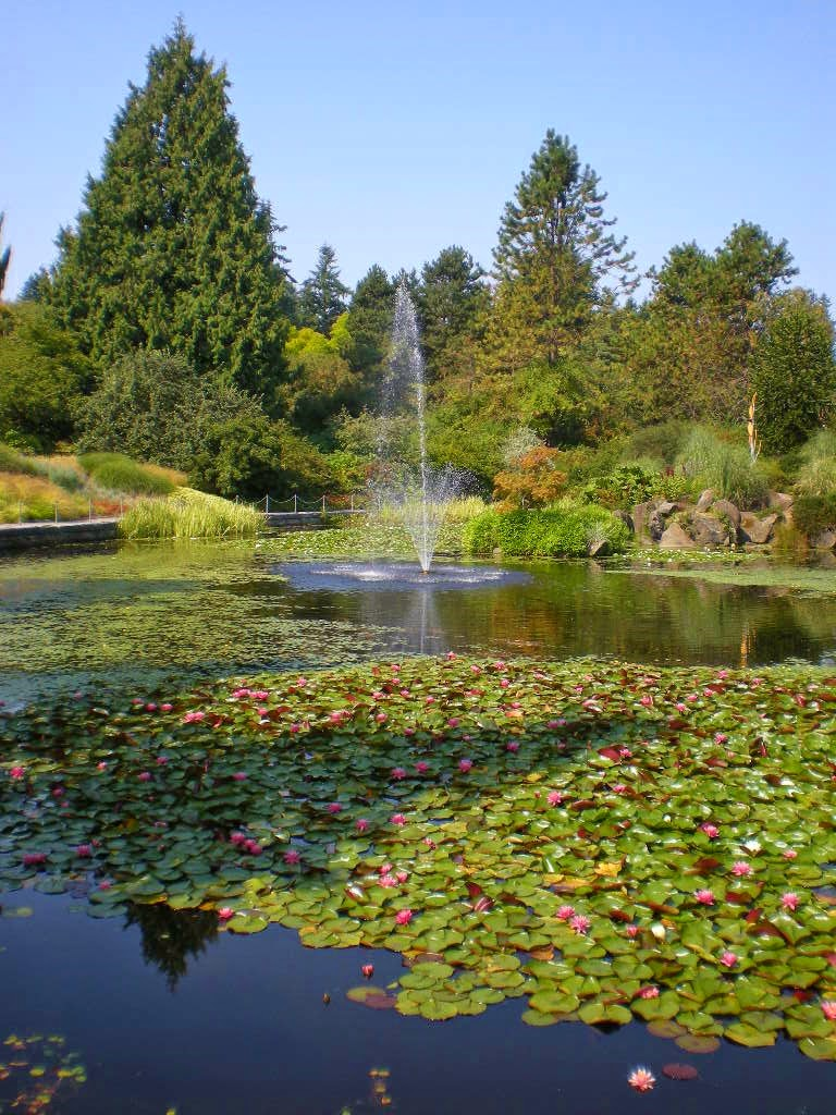 Botanic Gardens Seattle Japanese Botanical Garden Seattle Flickr Photo Bellevue Part Ii