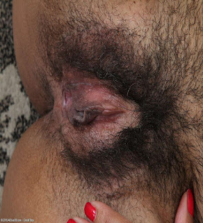 Sexy Hairy Pussy - sexygirl-472-730713.jpg
