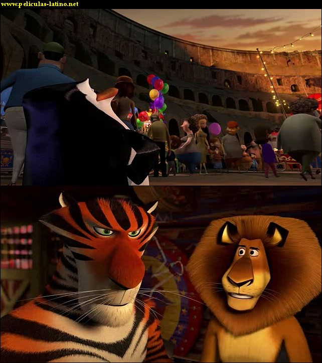 Imagen 1 Madagascar 3 - Los Fugitivos película brrip latino 2012