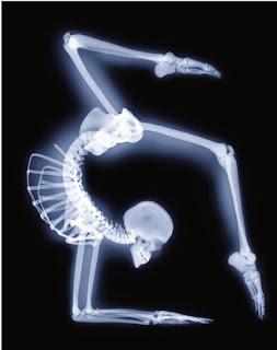 Stop. Yoga Time<br>Vrschikasana (scorpion pose)