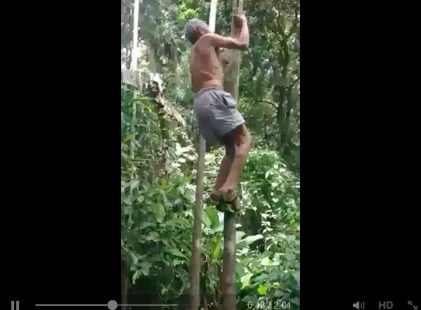 http://www.funmag.org/video-mag/mix-videos/amazing-old-man/
