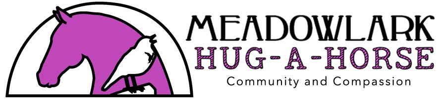 Meadowlark Hug-A-Horse