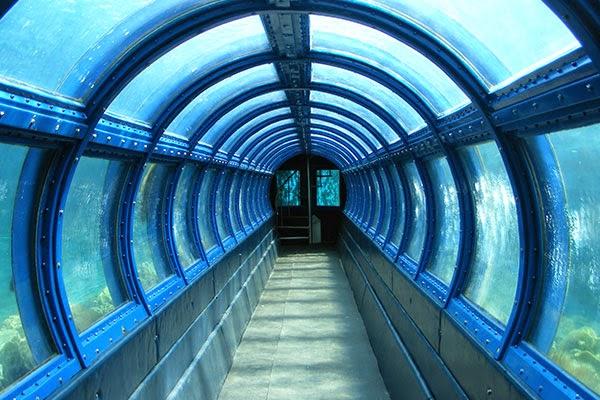 Photo Aquarium Raksasa di Pulau Pramuka