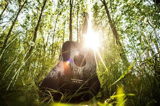 gitar kapok harga ciri ciri asli