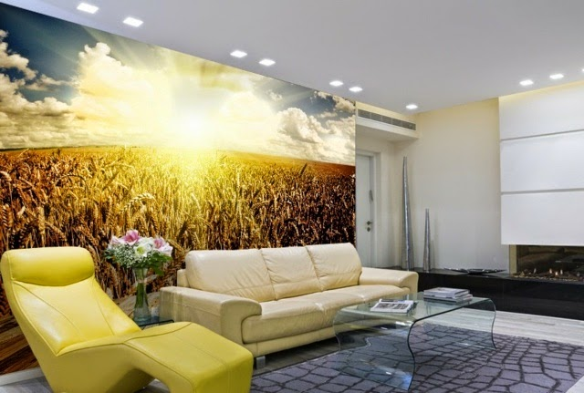Wall Decoration Ideas With Photo Wallpaper Field