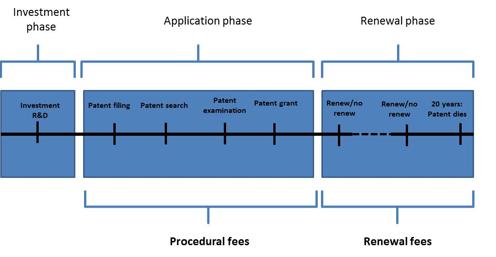 comment avoir le brevet d office 2012