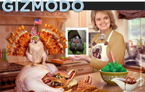 Picture of Gizmodo's article lead-in photo.