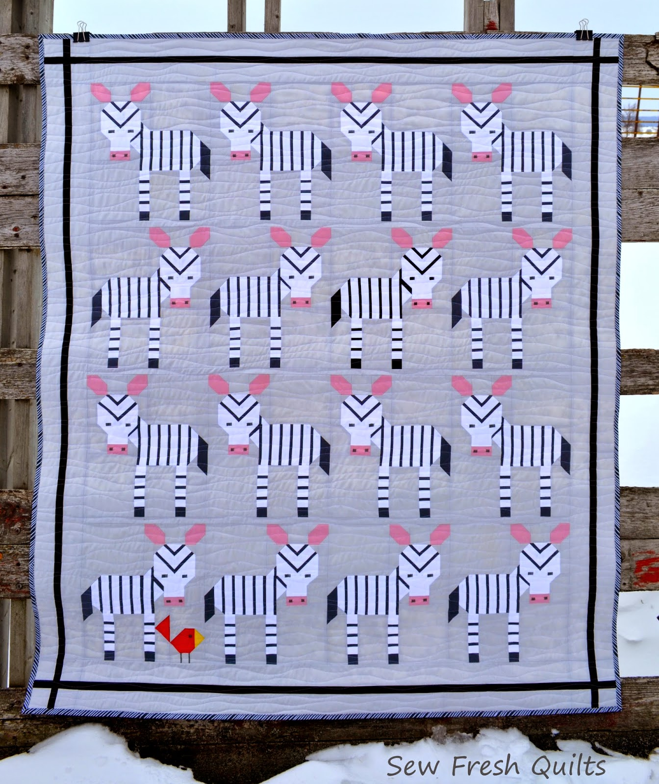 http://sewfreshquilts.blogspot.ca/2015/03/zebraz-quilt-in-its-unnatural-habitat.html