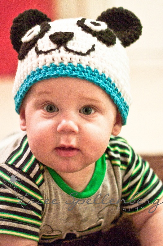 Crochet Stitches Baby Hats : the first of my animal hat crochet patterns panda hat i have always ...