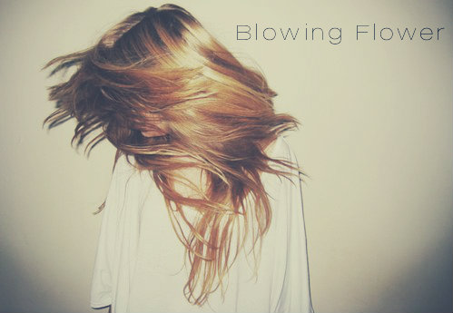 Blowing Flower