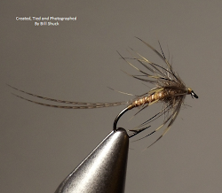 Archive of Modern Soft-Hackle Wetflies