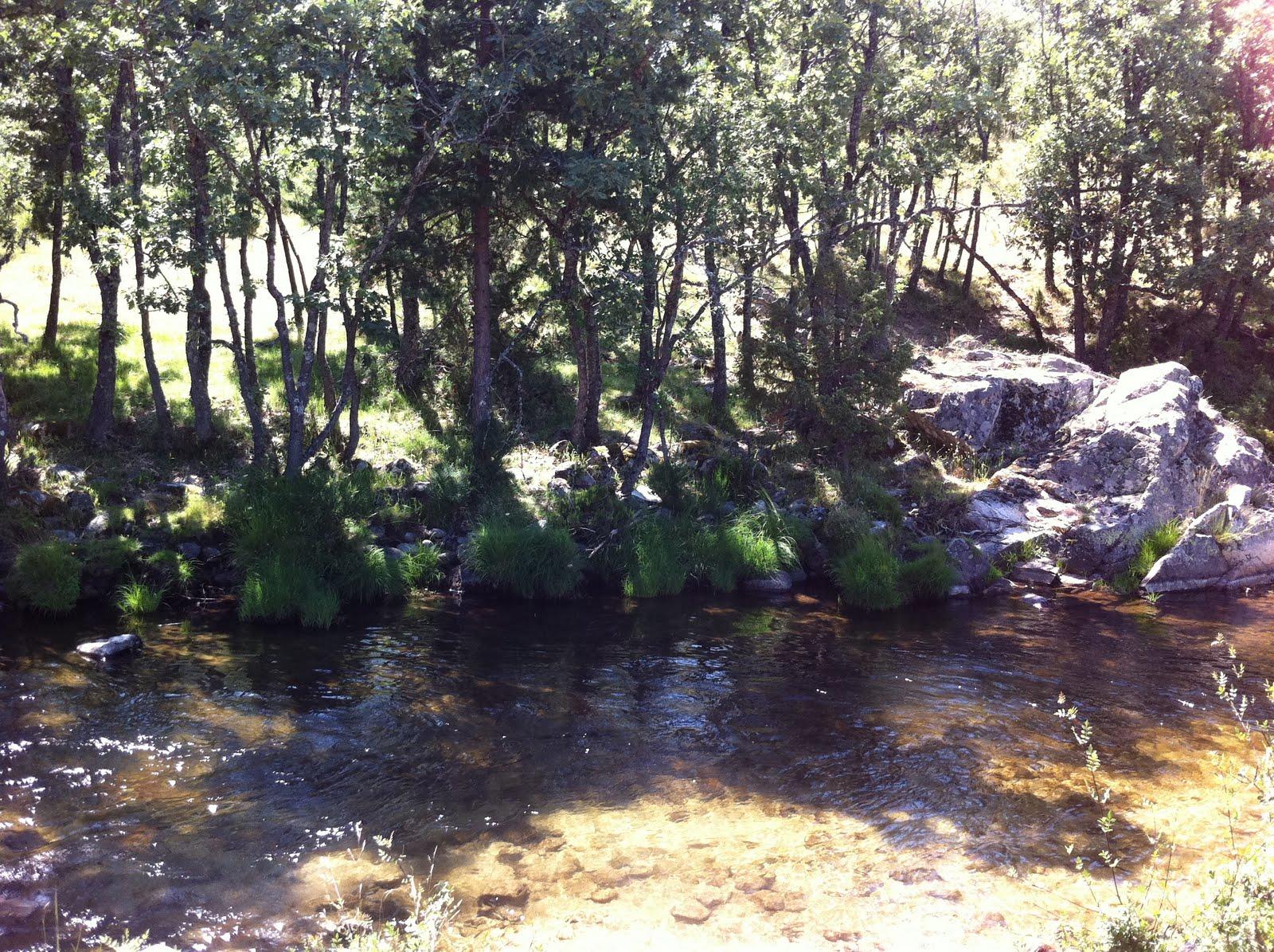 Losaunmasbajitos madrid piscinas naturales las presillas for Piscinas naturales las presillas
