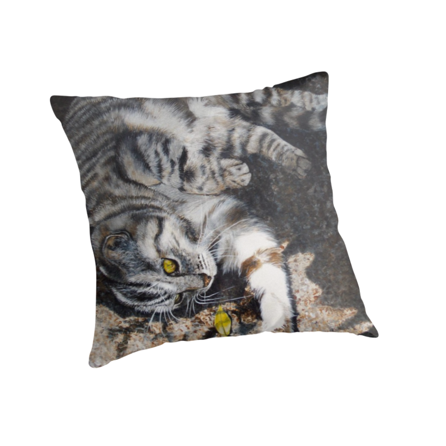 NEW! Throw cushions