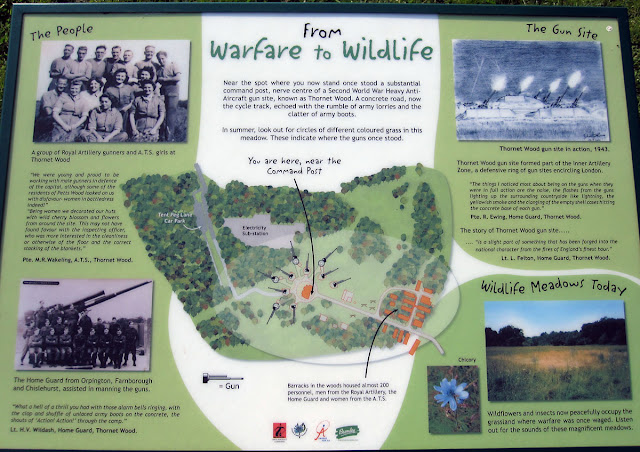 The history notice board, with information about the WWII gun emplacement.  Click on it to see it enlarged.