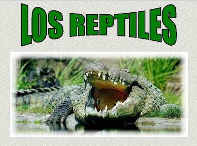 http://cp.gerardodiego.leganes.educa.madrid.org