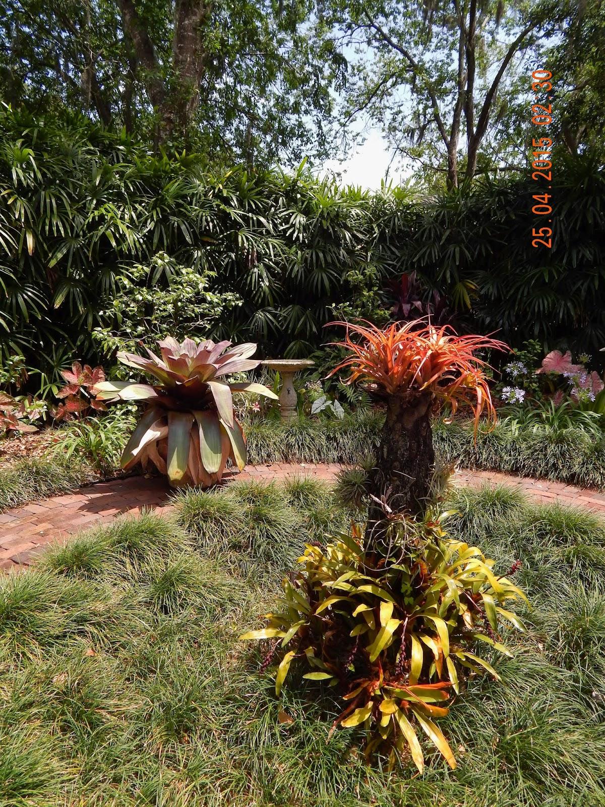 Simply Susan: A Visit to Nancy\'s Garden