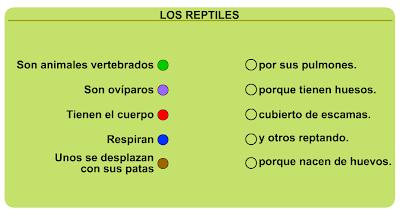 http://primerodecarlos.com/SEGUNDO_PRIMARIA/diciembre/Unidad5/actividades/cono/reptiles.swf