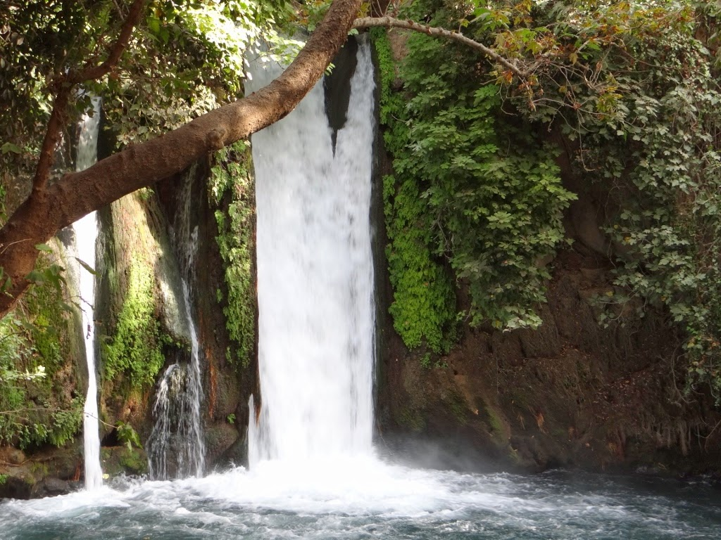 Rezerwat Przyrody Banias