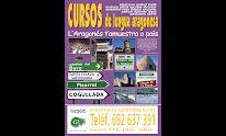 -CURSOS D'ARAGONES-