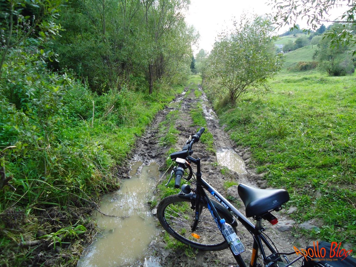 Bicicleta in noroi