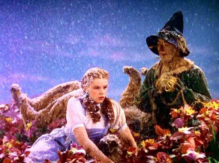 mise en scene in the wizard of oz Mise en scène encompasses the most recognizable attributes of a film - the  setting and  of the classic hollywood era is its presence in the wizard of oz ( 1939.