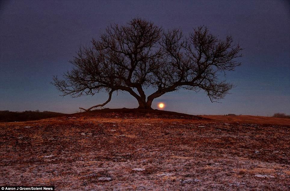 القمر  13
