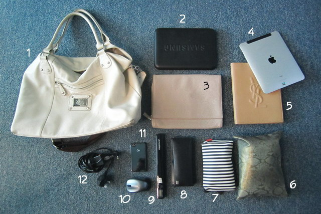 YSL ipad case, Saint Laurent ipad case, SEED tote, SEED bag, Ordning & Reda pouch, python bag, Calvin Klein ipad case, laptop
