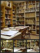 "1º Premio Concurso Fotográfico ""Me gusta la biblioteca"""